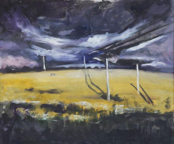 LANDSCAPE - FIELD IN CO. MEATH - UNFRAMED - 50 x 60cm - oil on board