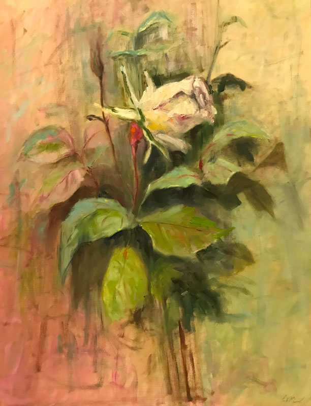 FLORAL - A ROSE BY ANY OTHER NAME - 60 x 50cm UNFRAMED - OIL ON CANVAS - GIFTED AWAY