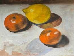 oranges and lemons still life