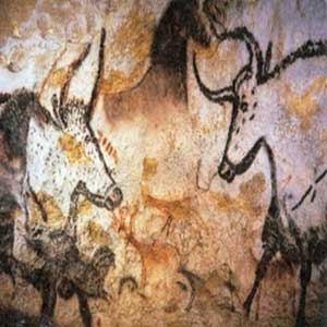 The Hall of the Bulls Lascaux Cave